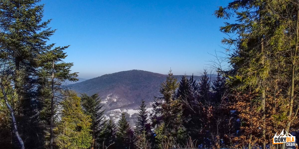 Widok naStrzebel (976 m) zniebieskiego szlaku naLuboń Wielki