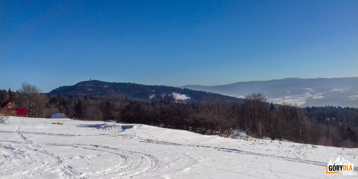Szczyt Lubonia Wielkiego (1022 m) widziany zPolany Surówki