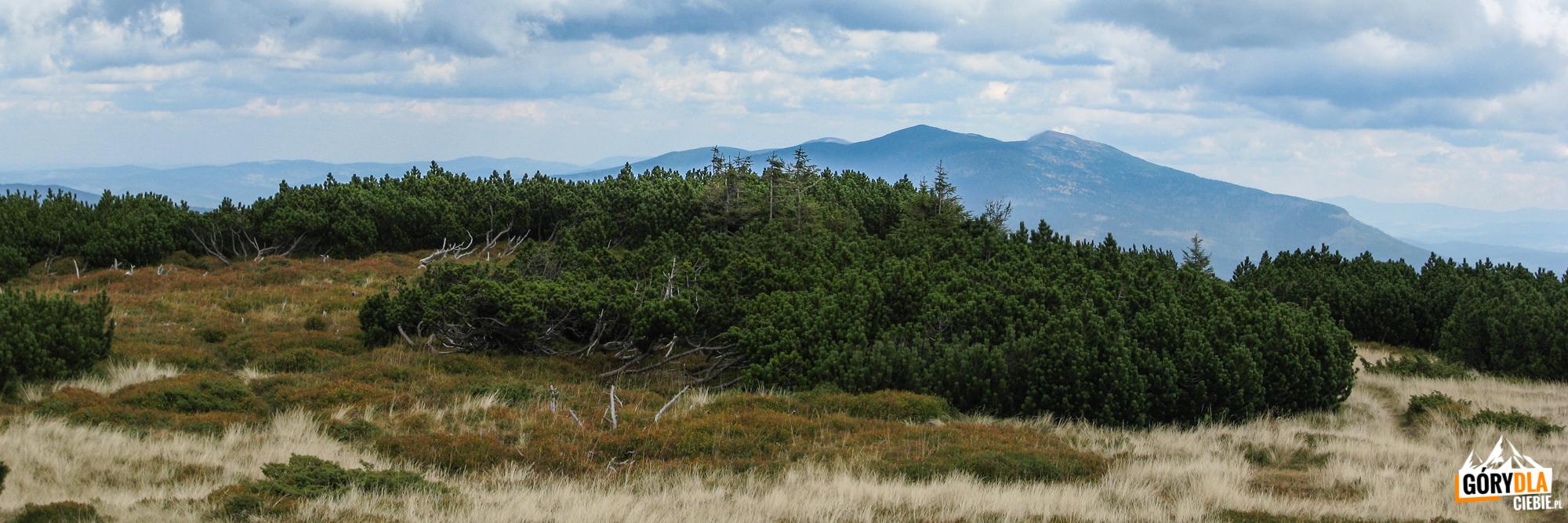 Widok zeszczytu Pilska (1557 m) wkierunku Babiej Góry (1725 m)