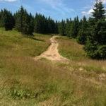 zejście z Hali Miziowej do Sopotni, zielony szlak