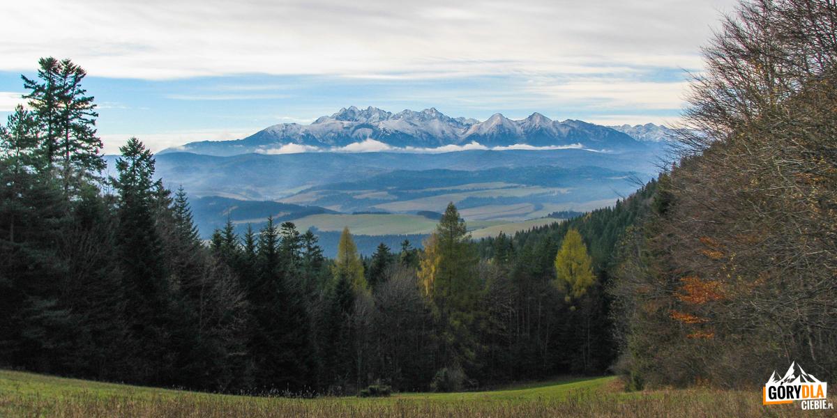 Panorama Tatr z Przełęczy Szopka (780 m)