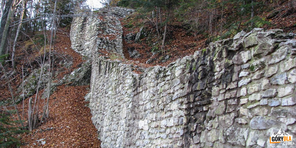 Mury Zamku Pienińskiego