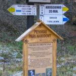 Rozwidlenie szlaków przy Pienińskim Potoku (678 m)