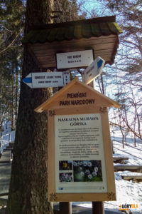 """Drogowskazy przy """"poczekalni"""" pod szczytem Trzech Koron (982 m)"""