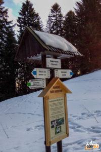 Drogowskazy na Polanie Kosarzyska (824 m)
