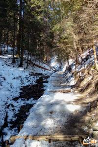 Wąwóz Szopczański zimą