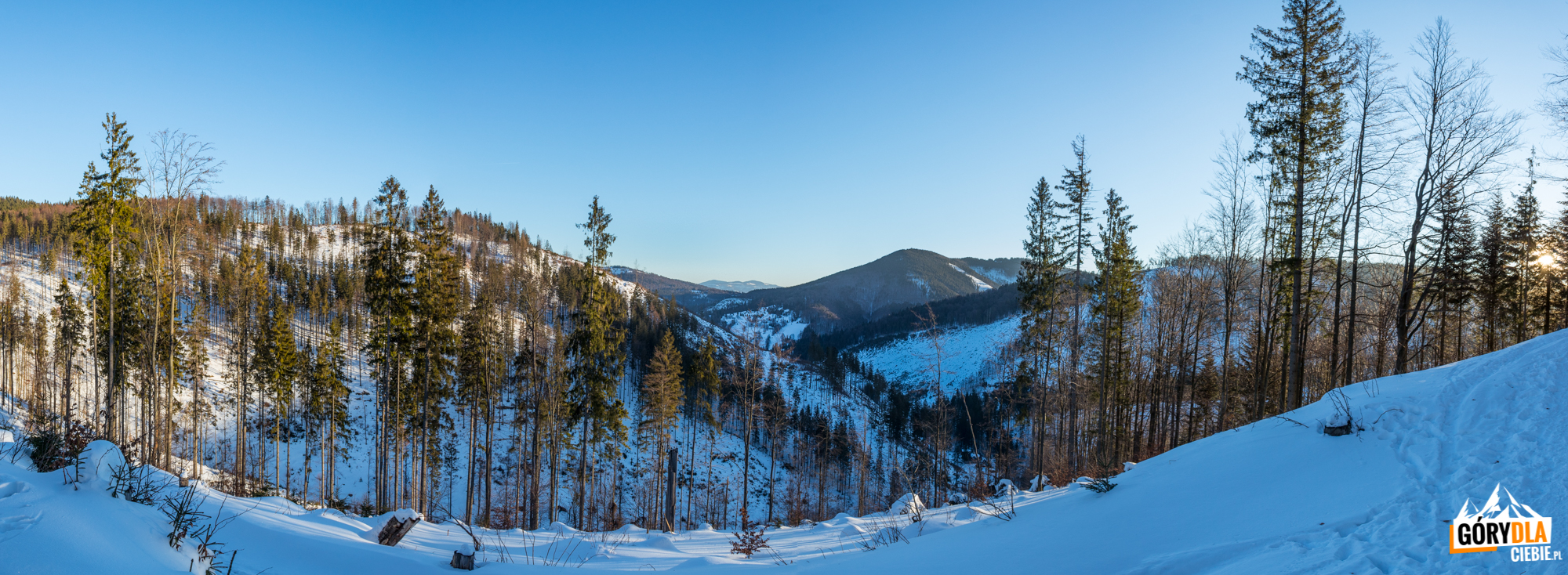 Widoki z żółtego szlaku na Wielką Raczę (1236 m)