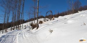Żólty szlak na Wielką Raczę (1236 m)