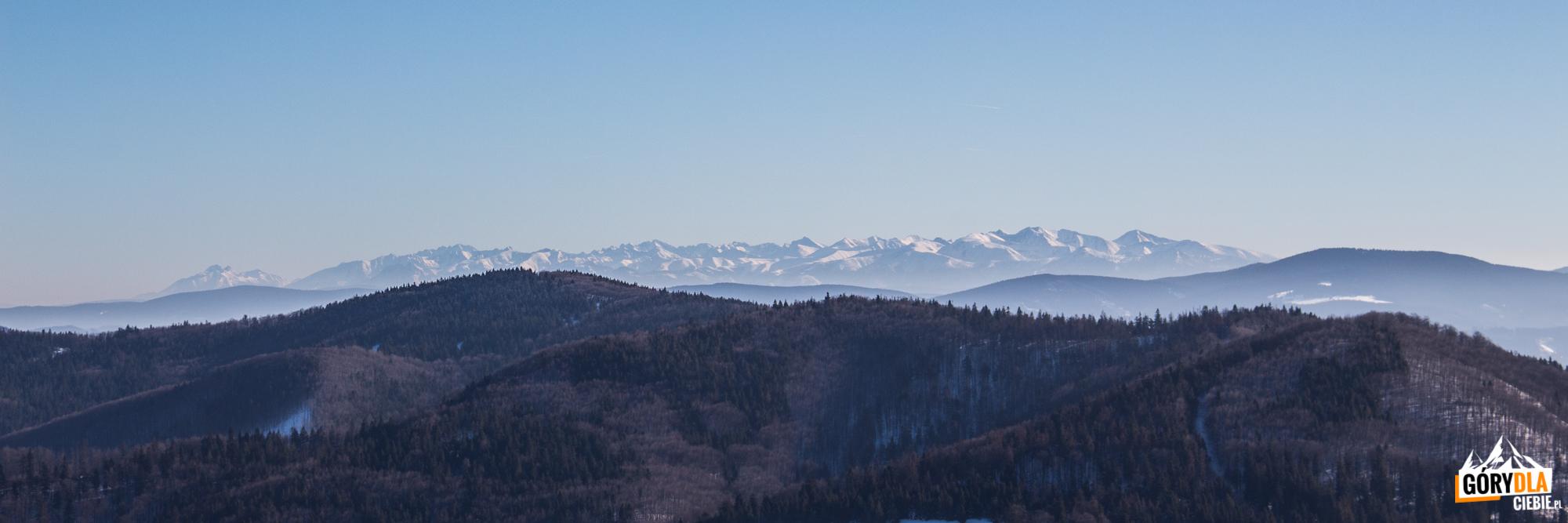 Odległe Tatry widziane z Małej Raczy (1153 m)