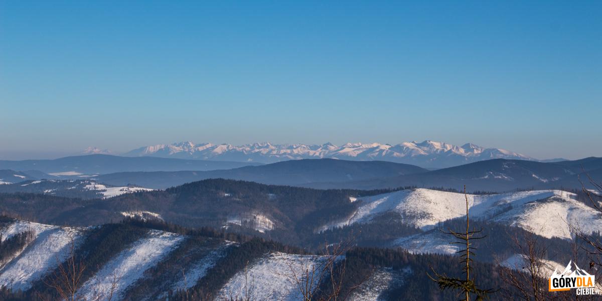 Panorama Tatr spod szczytu Jaworzyny (1173 m)