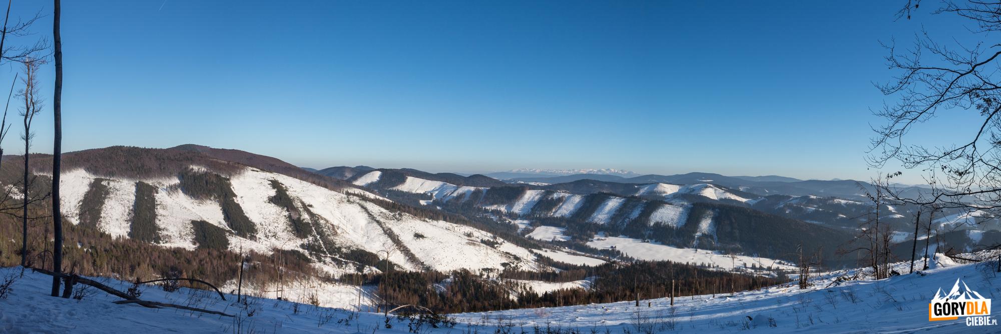 Panorama wkierunku Tatr spod szczytu Jaworzyny (1173 m)