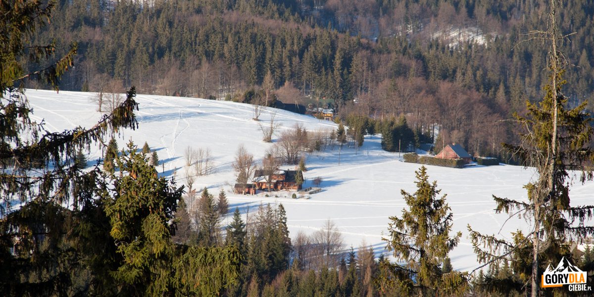 Pojedyńcze zabudoania naPrzełęczy Przegibek (990 m)