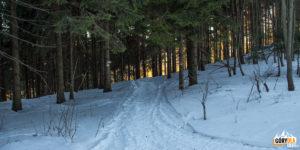 Przełęcz pod Banią (1030 m) czerwony szlak zbiega z grani na Przełęcz Przegibek