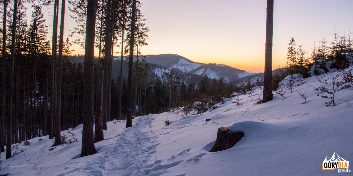 Zejście zielonym szlakiem zPrzełęczy Przegibek doRycerki Kolonia - wtle Wielka Racza