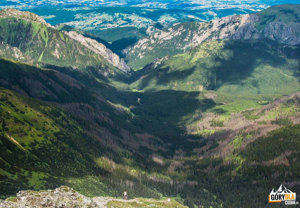 Widok z Błyszcza (2158 m) na Dolinę Pyszniańską