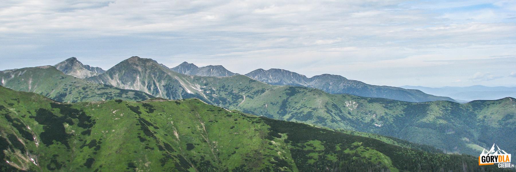 Widok z Suchego Wierchu Ornaczańskiego (1832 m) - od lewej: Rohacze, Wołowiec (2063 m), Pachoł (2176 m), Spalona Kopa (2083 m), Salatyn (2048 m) i Brestowa (1934 m)