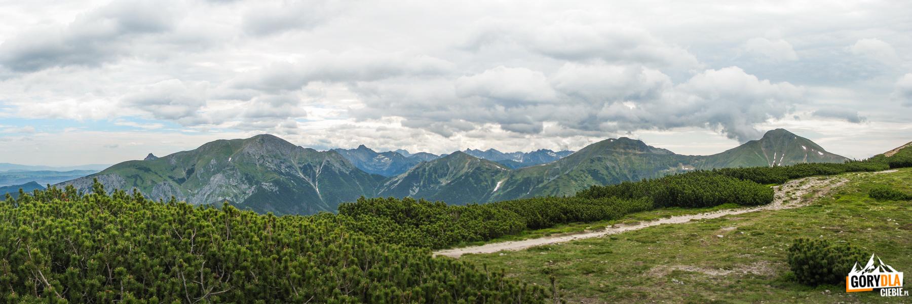 Widok zSuchego Wierchu Ornaczańskiego (1832 m) - odlewej: szczyt Giewontu (1895 m), Ciemniak (2096 m), Swinica (2301 m), Tomanowy Wierch (1977 m), Smreczyński Wierch (2068 m) iKamienista (2126 m)
