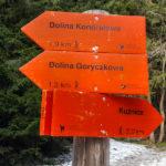 Oznaczenia traas narciarskich