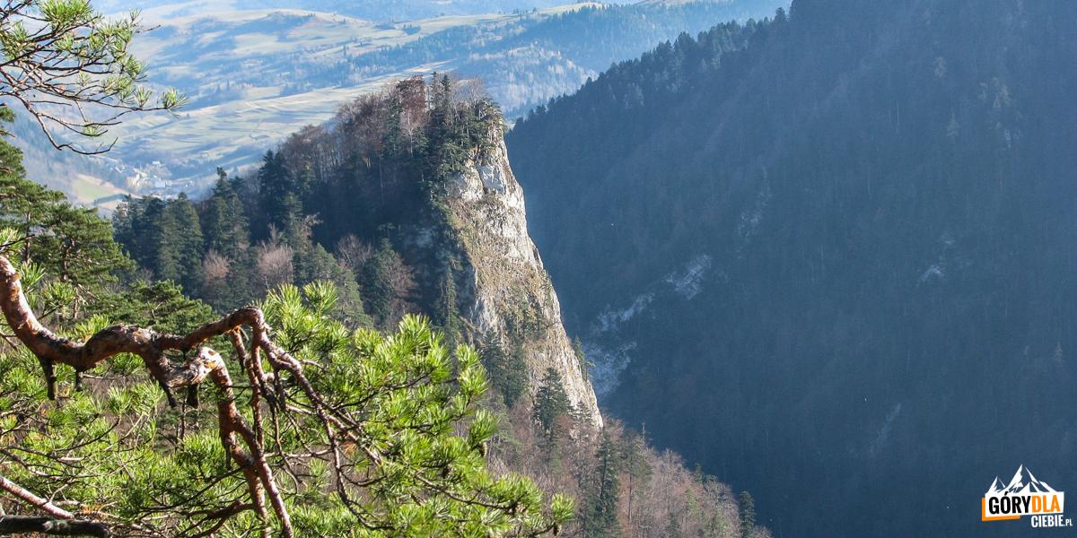 Sokolica (747 m) widziana z Czertezika (772 m)