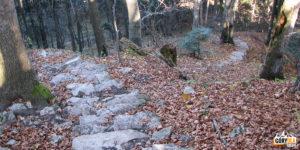 Sokola Perć - zejście na Przełęcz Burzana (724 m)