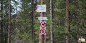 Szlaki do Doliny Starorobociańskiej - na Siwą Przełęcz i Iwaniacką Przełęcz