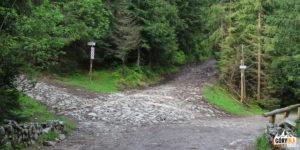 Dolina Chochołowska - początek czerwonego szlaku na Trzydniowiański Wierch (1758 m)