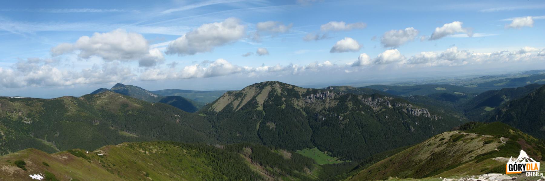 Widok zTrzydniowiańskiego Wierchu (1758 m) naGrzesia (1653 m), Osobitą (1687 m) iBobrowiec (1663 m)