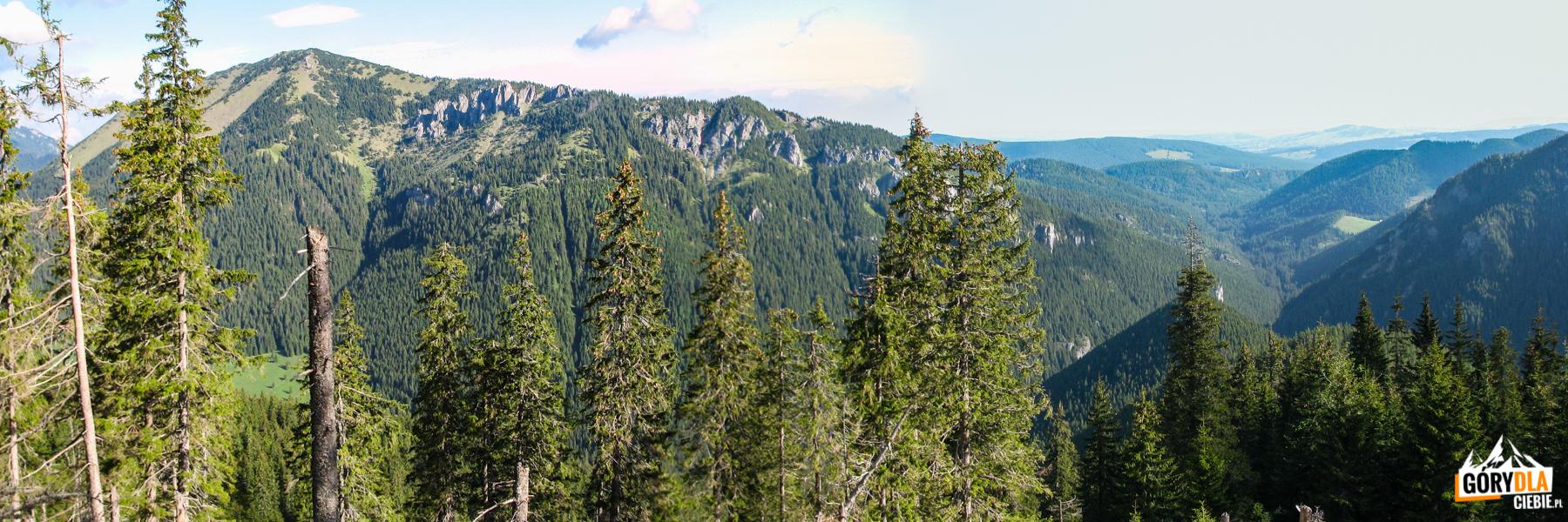 Bobrowiec (1663 m) widziany zpodejścia naTrydniowiański Wierch (1758 m) przez Krowieniec
