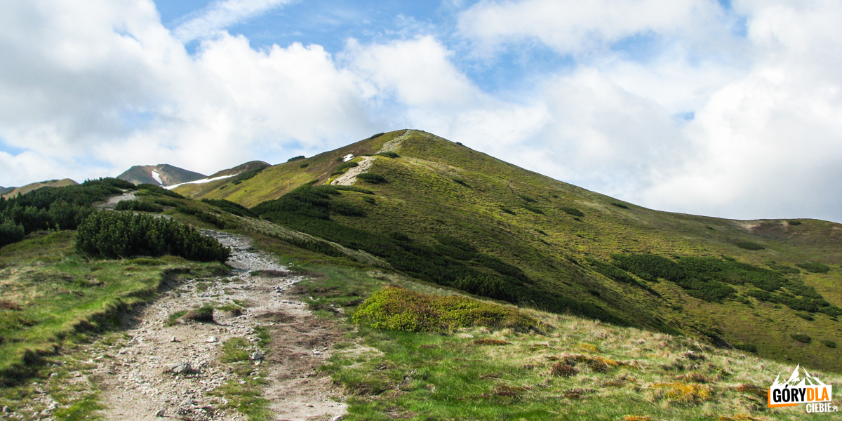 Na grani podTrzydniowiańskim Wierchem (1758 m)