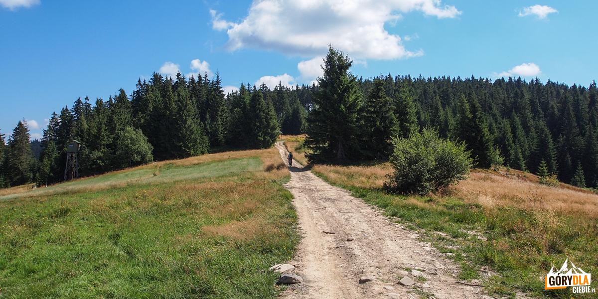 Malownicza droga granią w kierunku Solniska