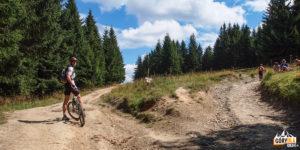Rozwidlenie szlaku pieszego i rowerowego pod szczytem Turbacza