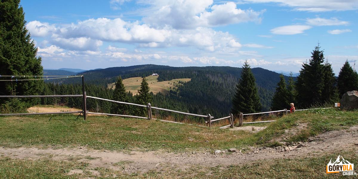 Widok spod schroniska na Turbaczu na Gorce w kierunku Hali Długiej