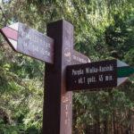 Rozwidlenie szlaków na Obidowcu (1106 m)