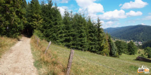 Niebieski szlak ze Starych Wierchów na Rdzawkę