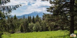 Punkt widokowy pod szczytem Płaśni (słow. Plašná; 889 m)