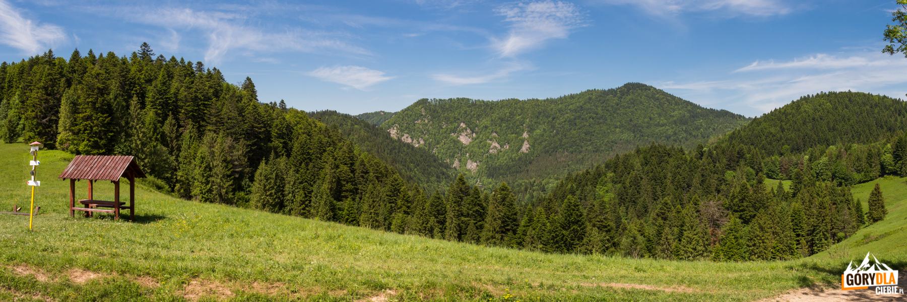 Widok zPrzełęczy Cerla (610 m) wgłąb Przełomu Dunajca