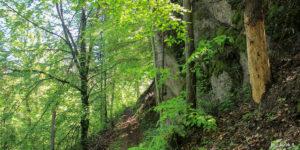 Formacje skalne przy szlaku w okolicach Aksamitki (841 m)