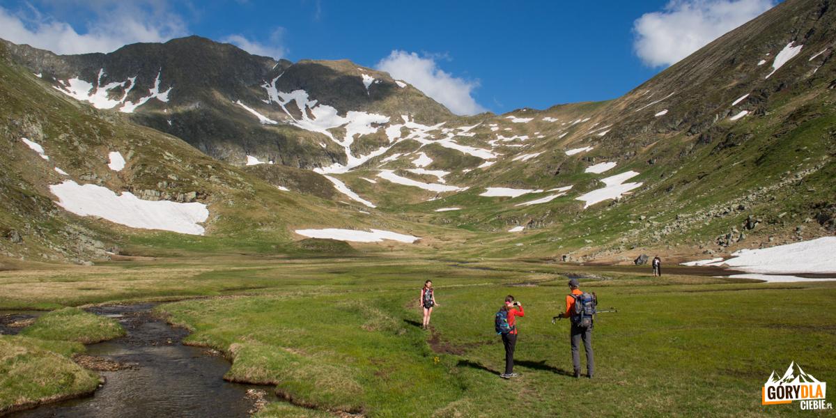 Dolinka pod szczytem Moldoveanu (2544 m) od strony doliny Valea Rea