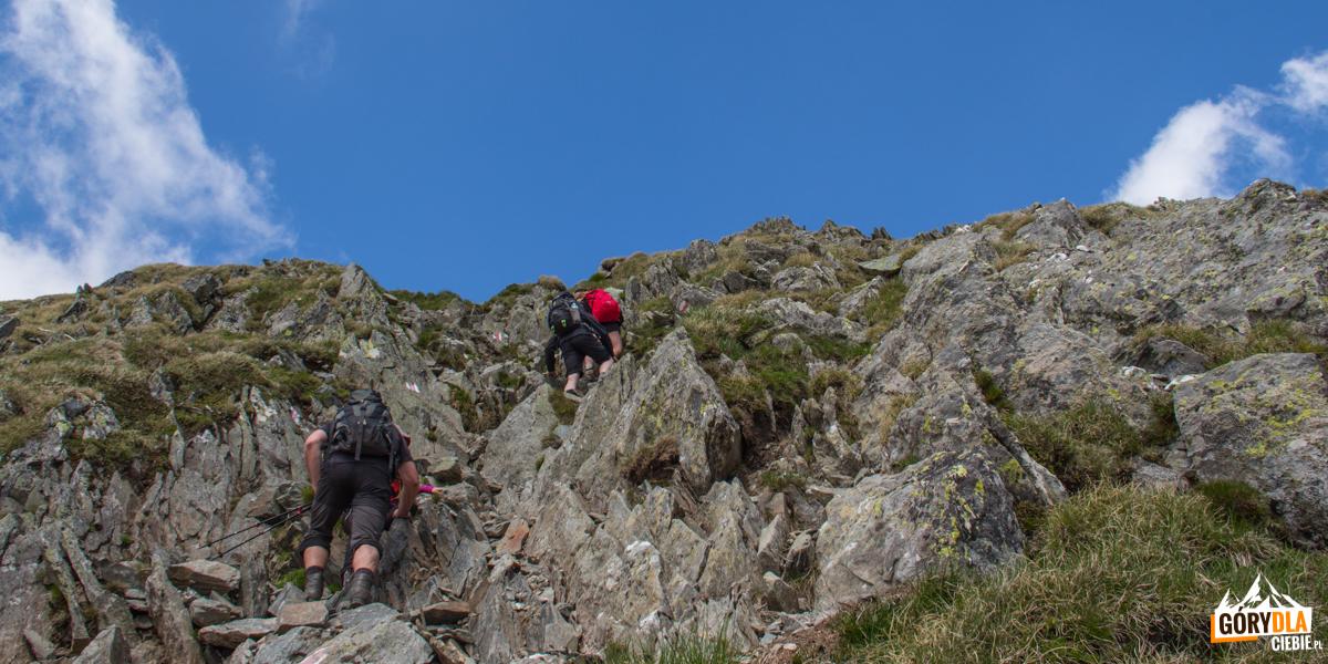 Podejście z przełęczy Portița Viștei 2317 na Moldoveanu