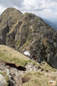 Na trasie pomiędzy Vf. Vistea Mare (2527 m) i Moldoveanu (2544 m)