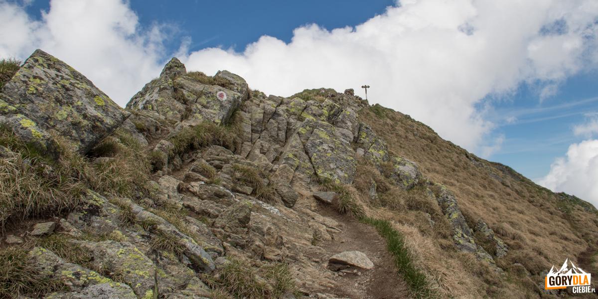Vf. Vistea Mare (2527 m)