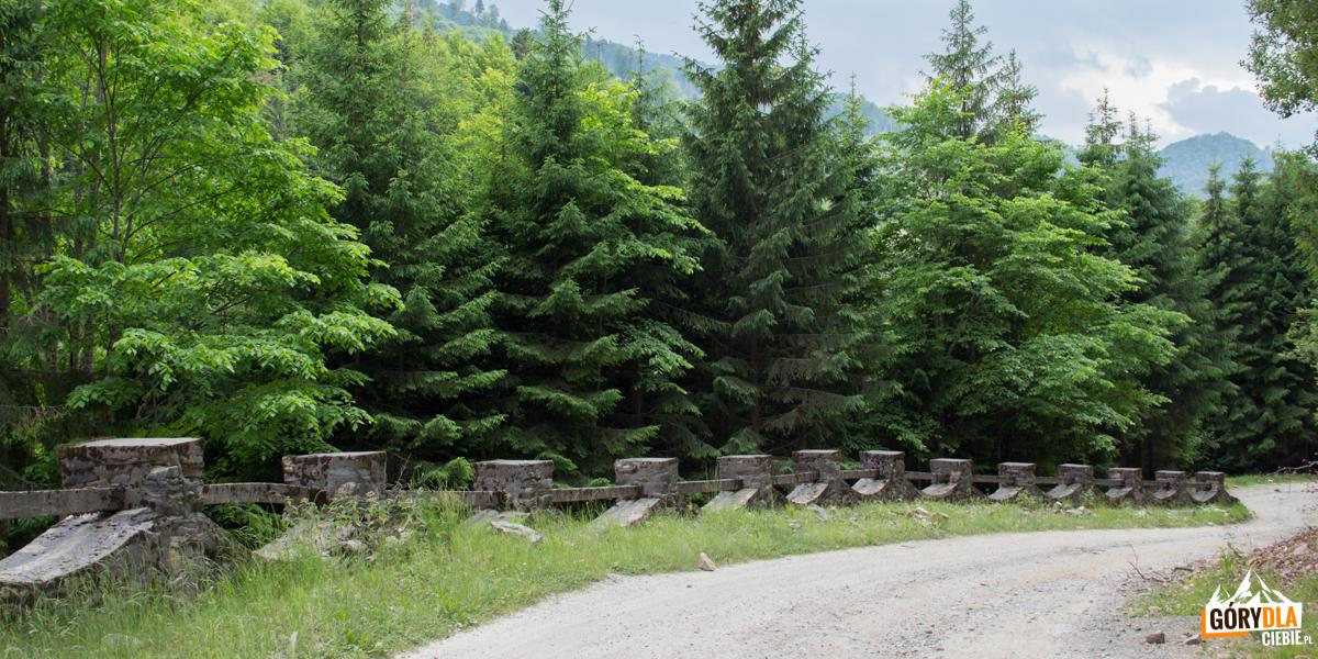 Droga w dolinie Valea Rea