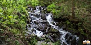 Potok Krzywa Rzeka (zielony szlak na Babią Górę)
