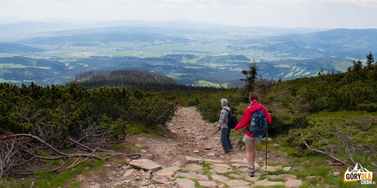Zejście zeszczytu Babiej Góry żółtym szlakiem nasłowacką stronę
