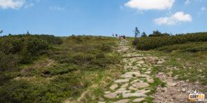 Zejście ze szczytu Babiej Góry żółtym szlakiem na słowacką stronę