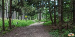 Przejście granicy pod Czyżów Wierszek (droga do Stańcowej)