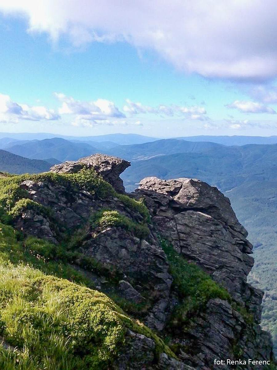 Szczyt Pikuja (1408 m), zdj. Renka Ferenc