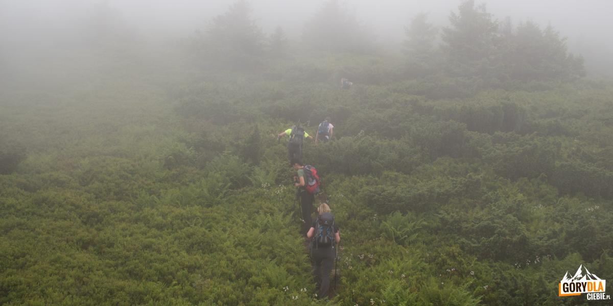 Podejście na szczyt Pikuja w gęstych chmurach