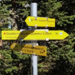 Drogowskaz poniżej górnej stacji kolejki linowej Rax-Seilbahn, żółty szlak prowadzi do wsi Kaisserbrunn
