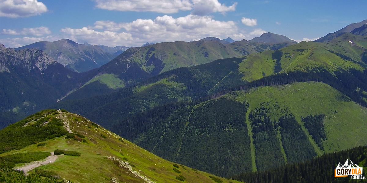 Widok zeszczytu Grzesia (1653 m) naCzerwone Wierchy, Ornak, Błyszcz (2159 m), Trzydniowiański Wierch (1758 m), nahoryzoncie szczyt Krywania